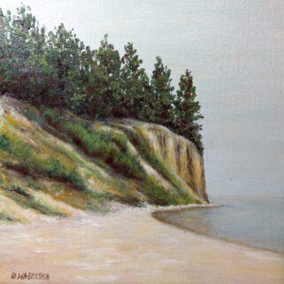 Gdyński klif- Olej na płótnie -Dorota Waberska, obraz olejny w ramie, Wymiary z ramą: 33 cm x 33 cm. Wspaniała pamiątka z nad morza.